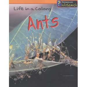 Animal Groups: Ants   Life in a Colony (9780431169224