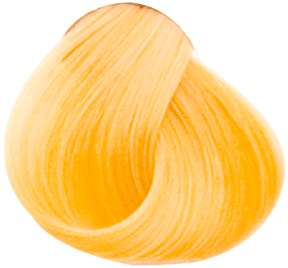 Goldwell Topchic Professional Hair Color (2.1 oz. tube)  9G