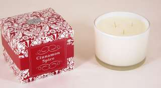 13 oz Cinnamon Spice Scented 3 Wick Soy Candle by Paddywax Flora