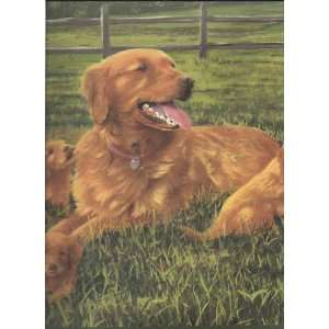 Wallpaper Border Hautman Brothers Golden Retrievers Dog & Puppies