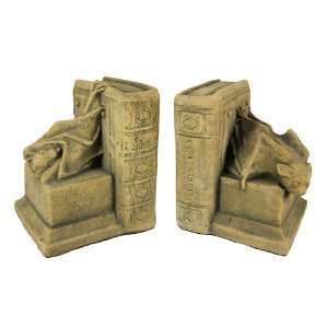 Cool Vampire Bat Bookends Medieval Book Ends: Home