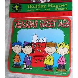 Peanuts Gang Snoopy Chrlie Brown Lucy Linus and Sally