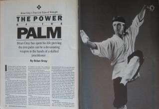 RARE 9/91 INSIDE KUNG FU BOLO YEUNG JOHN PAINTER BLACK BELT KARATE