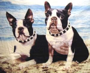 SOFT FLEECE THROW BLANKET W/ BOSTON TERRIER PUPPIES DOG BLUE