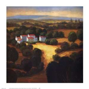 Landscape I   Poster by Tomasino Napolitano (15 x 15): Home & Kitchen