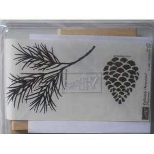 Up Definitely Decorative Pinecones Wood Mounted Rubber Stamp