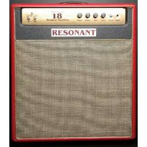 Resonant Amplifiers Barely Legal 18 Combo Musical