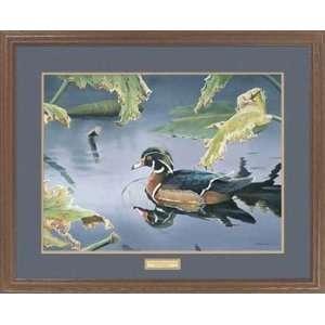 Susan Bourdet   Tranquil Pond   Wood Duck Framed