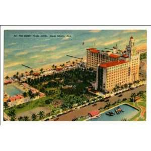 Reprint The Roney Plaza Hotel, Miami Beach, Fla: Home