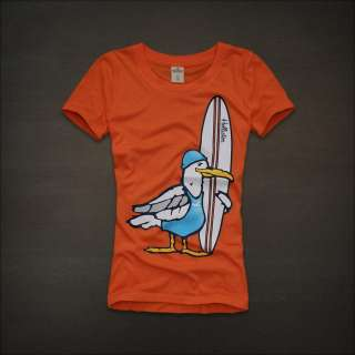 NWT Hollister Women Grandview Graphic Tee T shirt Top