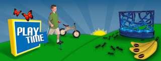 Praying Mantis: Green Earth Insect Life Cycle Habitat 0032309891010