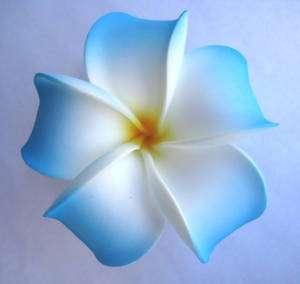 Flower Bridal Wedding Party Plumeria Hair Clip~White Blue Yellow