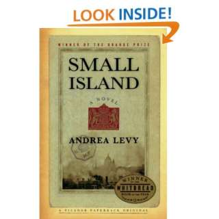 Small Island: A Novel (9780312424671): Andrea Levy: Books