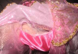 Storybook Sleeping Beauty Aurora Prestige Child / Toddler Costume