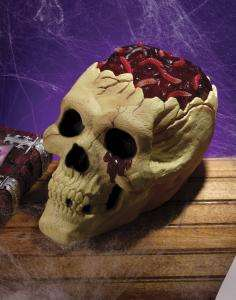 Skull With Bloody Brain   Decorations & Props