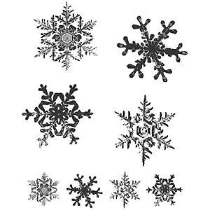 Stampers Anonymous Tim Holtz Cling Rubber Stamp Set   Grunge Flakes