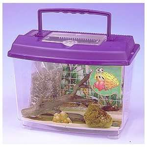 Reptile Habitat Hermit Crab   HERMIT CRAB KIT: Kitchen