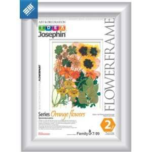 KIDS CRAFT KIT/Make a Herbarium African Flowers (Orange