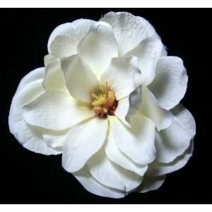 Large Full White Ivory Magnolia Flower Hair Clip and Pin Back Brooch