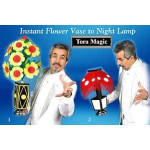 Instant Flower to Night Lamp with DVD   Brilliant Colorful