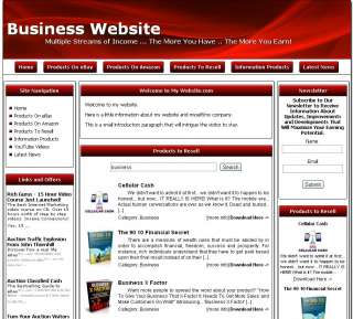 MONEY MAKING BUSINESS WEBSITE