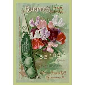 Burpees Farm Annual The Best Seeds That Grow 1895 12 x