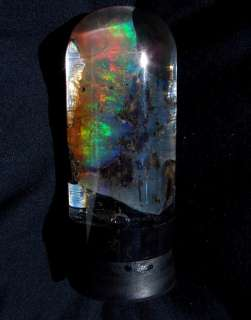 Virgin Valley NV Opal Specimen Bright Multi  Color WoW